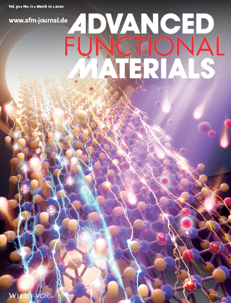 Paper Published on the Cover of Advanced Functional Materials 이미지